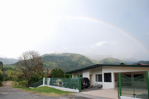 パナマ-ベルリナ農園