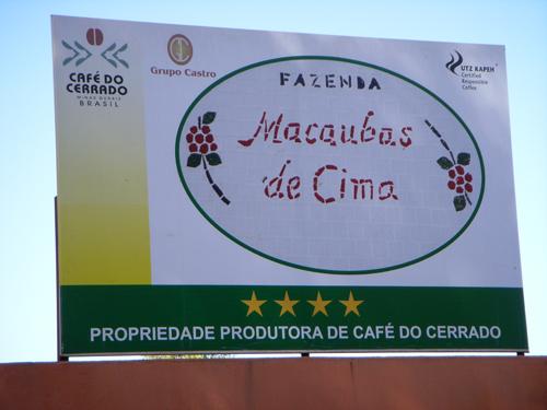 マカウバデシーマ農園